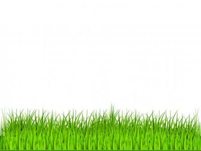 Naklejka Grüner Rasen