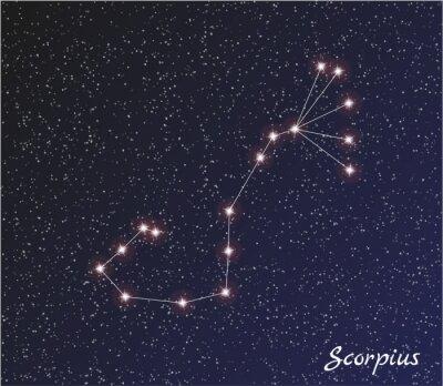 Naklejka Gwiazdozbiór Scorpius