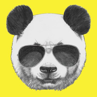 Naklejka Hand drawn portrait of Panda with sunglasses. Vector isolated elements.