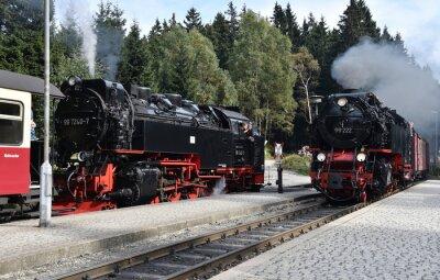 Naklejka Harz Kolej Wąskotorowa