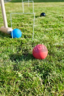 hitting of blue ball in game of croquet on green lawn in summer day