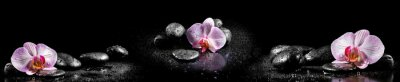 Naklejka Horizontal panorama with pink orchids and zen stones on black ba