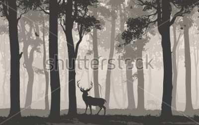 Naklejka Horizontal seamless background with deciduous forest, birds and deer. Vector illustration