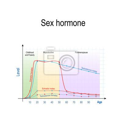 montaż hormonów kobiet co dzieje się z prostatą, gdy erekcja