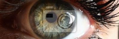 Naklejka Human green eye supermacro closeup background. Check vision concept