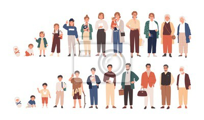 Naklejka Human life cycles vector illustration. Male and female growing up and aging. Men and women of different ages cartoon characters. Children, adult and old people isolated on white background.