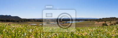 Naklejka Hunter Valley Winnice Panorama, NSW Australia