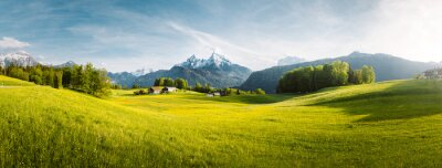 Naklejka Idyllic mountain landscape in the Alps with blooming meadows in springtime