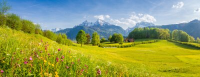Naklejka Idyllic mountain scenery in the Alps with blooming meadows in springtime