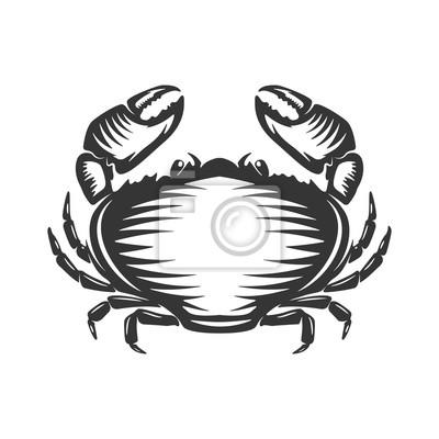 ikona krab na białym tle.