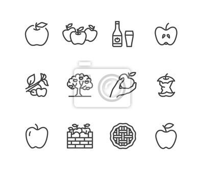 Naklejka Ikony płaskiej linii jabłka. Zrywanie jabłek, jesienne zbiory, ilustracje cydru owocowego. Cienkie znaki dla sklepu ze zdrową żywnością. Pixel idealny 48x48. Edytowalne obrysy.
