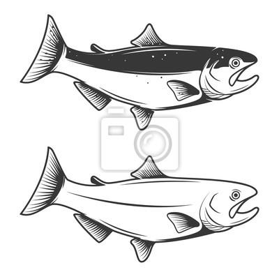 Ikony Pstrąg ryb wyizolowanych na białym tle. Design element fo