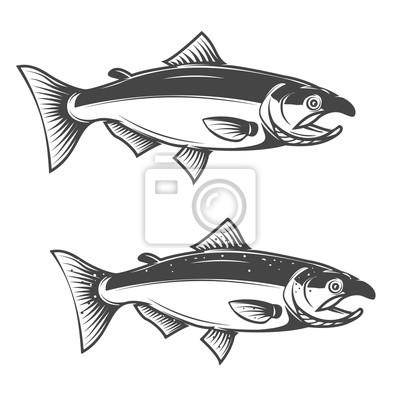 Ikony z łososia ryb odizolowane na białym tle.