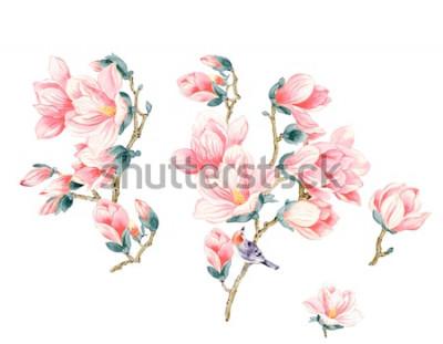 Naklejka Ilustracja kwiat magnolii
