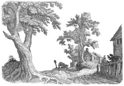 Naklejka Ilustracja wieś
