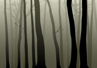 Naklejka Ilustracji wektorowych lesie