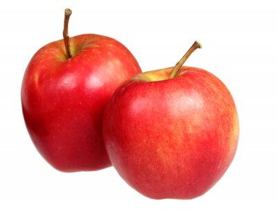 Naklejka Jabłka na białym tle