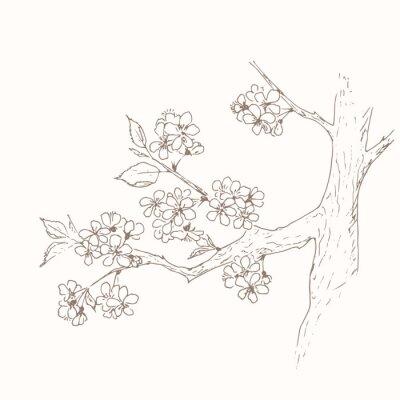 Naklejka Jabłko kwiat tle