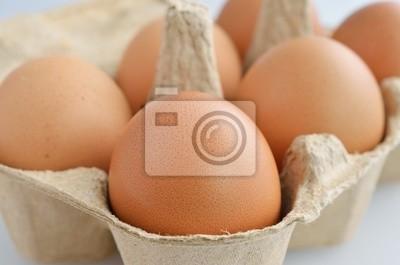jajka w kartonie