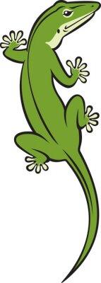Naklejka Jaszczurka zielona