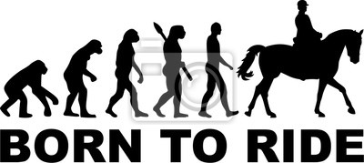 Jazda Evolution Born to ride