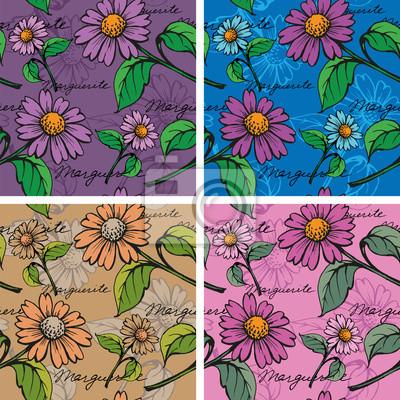 Jednolite tło z ręcznie rysowane Marguerites