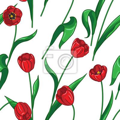 Jednolite wzór na białym tulipany
