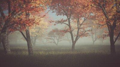 Naklejka Jesień las we mgle.