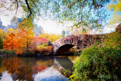 Naklejka Jesień w Central Parku w Nowym Jorku