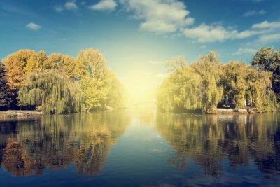 Naklejka Jesienne drzewa odbicie w wodzie jeziora w ciągu dnia