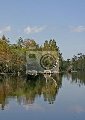 Jezioro refleksje