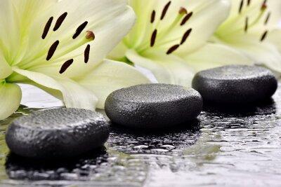 Naklejka Kamienie bazaltowe Z liliami wag TLE