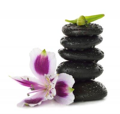 Naklejka Kamienie i lily