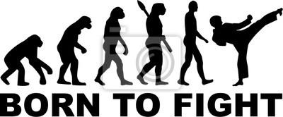 Karate Evolution Born to Fight
