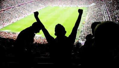 Naklejka kibice stadion