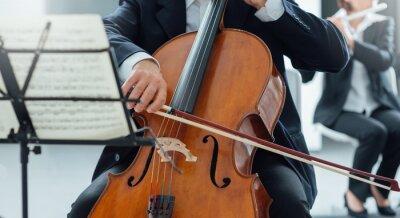 Klasyczna orkiestra, sekcja smyczkowa