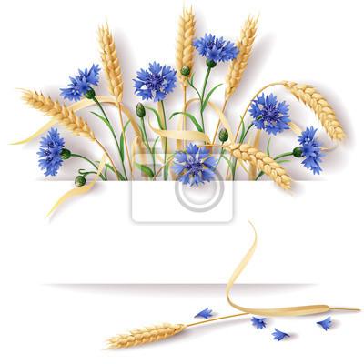 Kłosy pszenicy i chabry