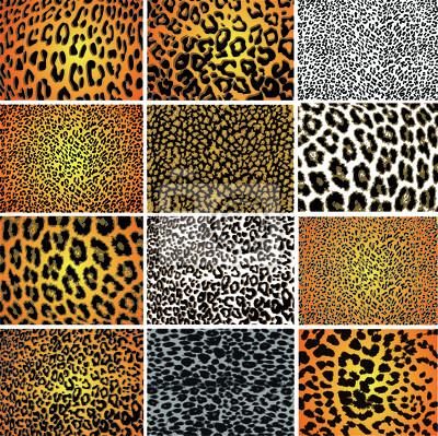 Naklejka Kolekcja 12 zwierząt wektor teksturę skóry