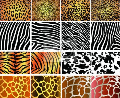 Naklejka Kolekcja 16 zwierząt wektor teksturę skóry