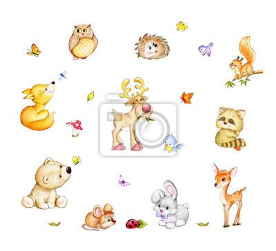 Naklejka Kolekcja cute zwierząt leśnych - Bear, lis, wiewiórka, jeż, Pracz, króliki, jelenie, łosie, myszy, ptaki, sowa