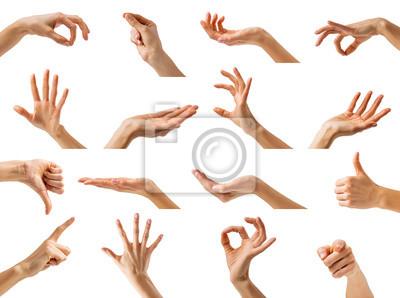 Naklejka Kolekcja ręce pokazujące różne gesty kobiet