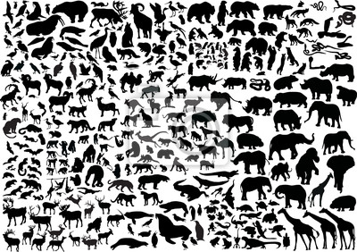 Naklejka Kolekcja sylwetki ogromne zwierzęta