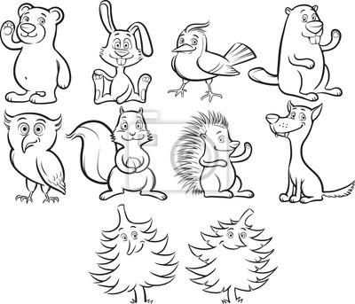 Naklejka Kolorowanie książki ładny rysunek zwierzęta leśne