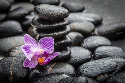 Naklejka Koncepcja Spa Zen bazaltu kamienie i Orchidea