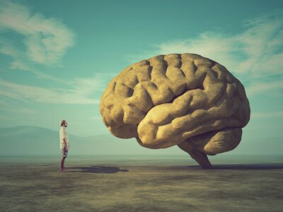 Naklejka Koncepcyjne obraz dużego kamienia w kształcie ludzkiego mózgu