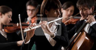 Koncert muzyki klasycznej: flecista zbliżenie