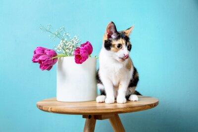 Naklejka Kot i wazon z tulipanami