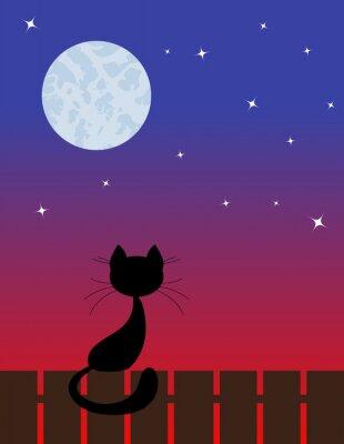 Naklejka kot z zachodem słońca
