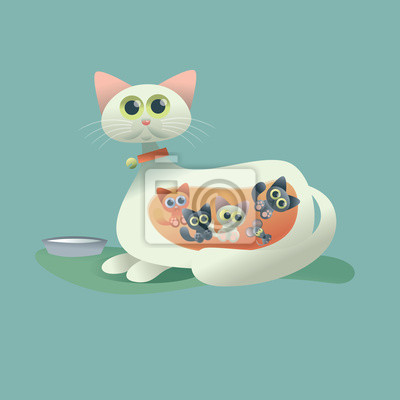 kotów i kotek