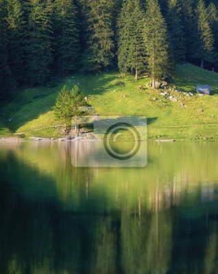 Naklejka Krajobraz w Szwajcarii. Las i jezioro. Odbicie na powierzchni wody. Naturalny krajobraz w okresie letnim. Szwajcaria - obraz